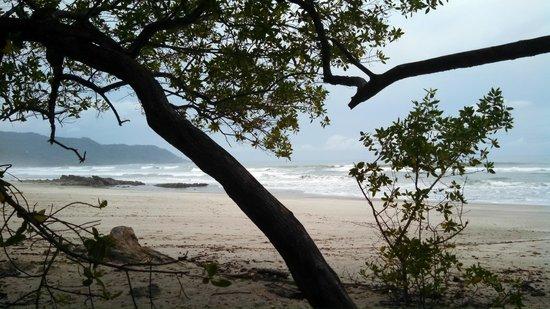Hotel Vista de Olas: Banana Beach a few minutes north of hotel by ATV