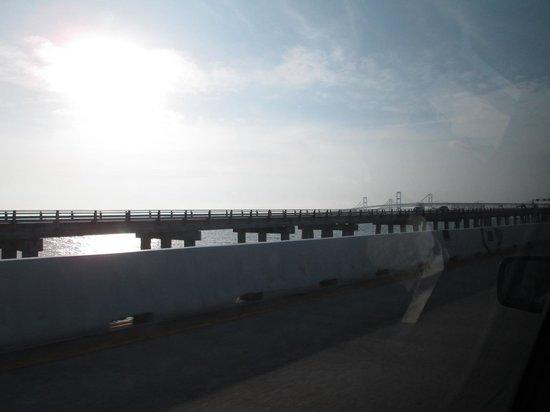 Rehoboth Beach: Bay Bridge