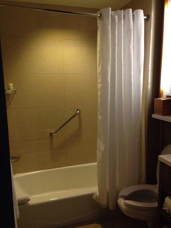 Grand Hyatt New York: Shower
