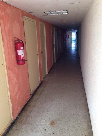 Safir Hotel Mazafran : Corridoi