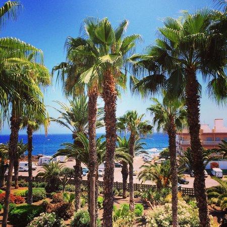 Alborada Beach Club: Вид из окна номера