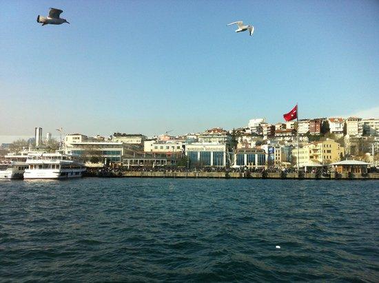 Bosphorus Cruise Day Trips: вид на Стамбул