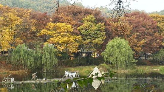 Korean Folk Village: It is real!