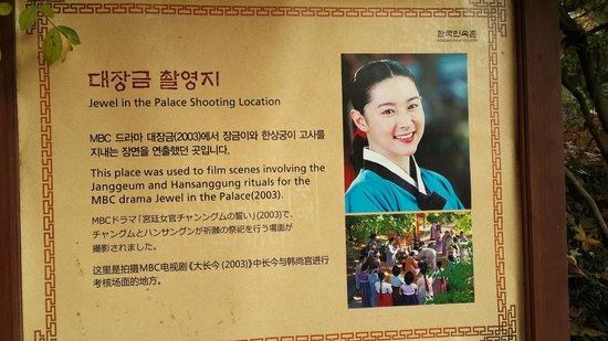 Korean Folk Village: Everyone knows her!