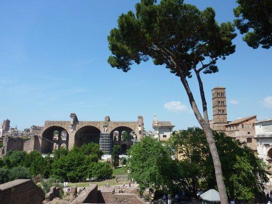 Rome Tour Guide Tours : Roman Forum