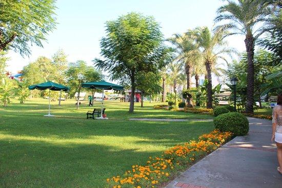Alva Donna Beach Resort Comfort: in garden