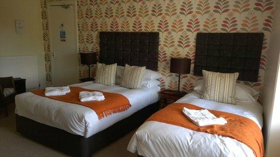 Amadeus Guest House : Room