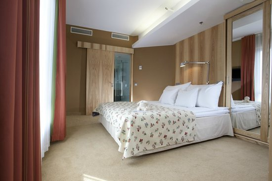 Hotel Euroopa: Suite