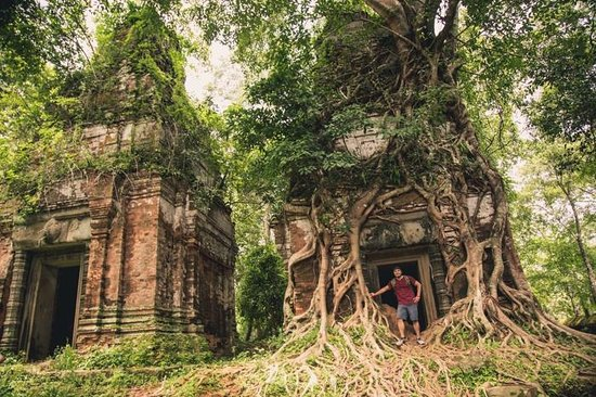 Siem Reap Private Day Tours: Tree Covered Temples