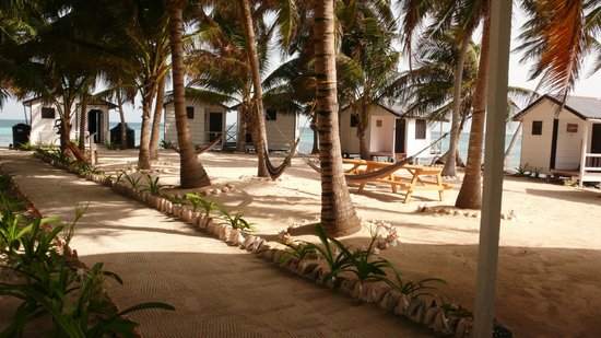 Tobacco Caye Paradise: Hotel Grounds and Cabins