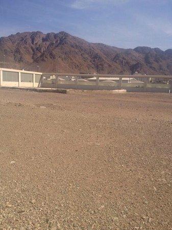 Μεδίνα, Σαουδική Αραβία: Grave of Hamzah