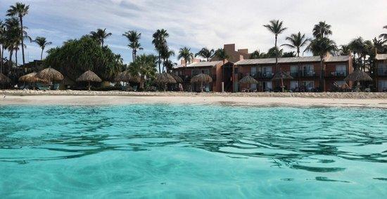 Tamarijn Aruba All Inclusive: The Tam from the beautiful water