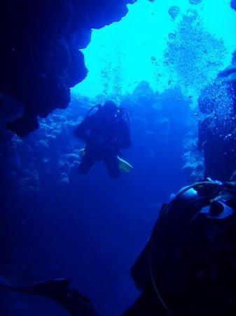 Diving in Dahab with Pospadan: grande