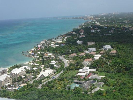 Hotel Riu Palace Paradise Island : paradise island area