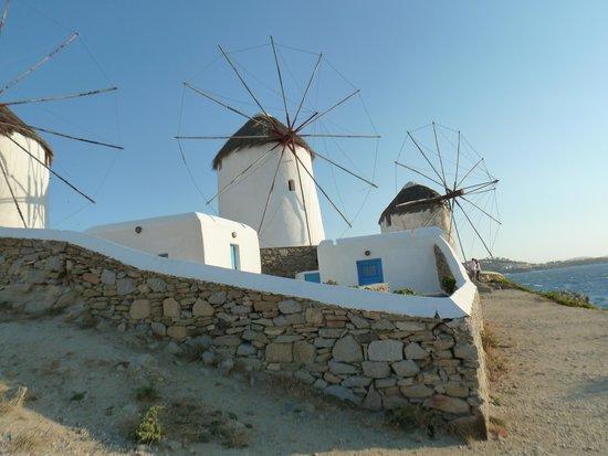 The Windmills (Kato Milli) : The Windmills