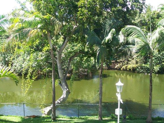 Sugar Beach Mauritius: lac derrière le manoir