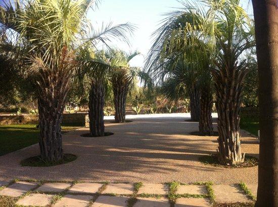 Cambiocavallo - Unesco Area & Resort: Relax relax relax