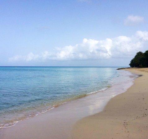 Rhythms at Rainbow Beach : Our Beach!