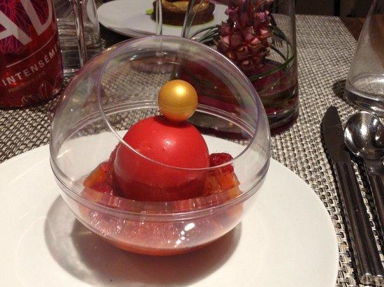 Renaissance Aix-en-Provence Hotel : rhubarb raspberry and chocolate surprise- delish!