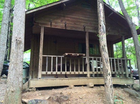 Crabtree Falls Campground