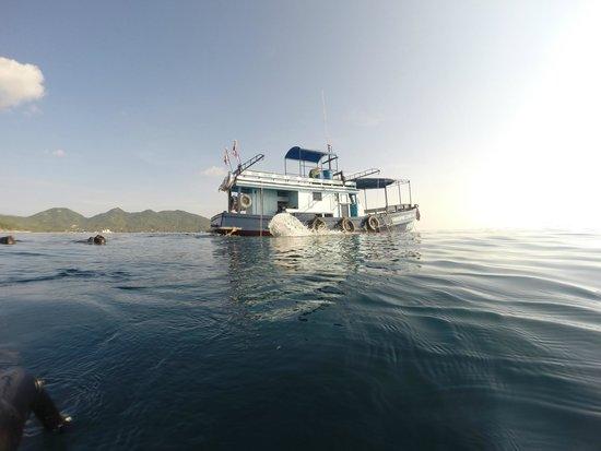 Apnea Total - Day Courses: The Apnea Total boat