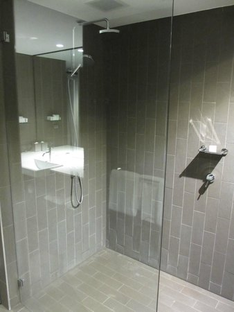 Rydges Sydney Airport Hotel: Enormous shower area but not much privacy