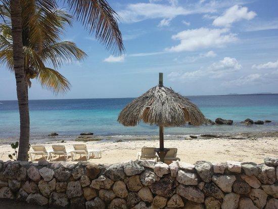 Plaza Resort Bonaire : Uitzicht vanuit onze kamer