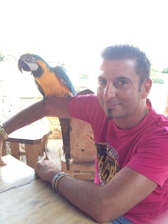 Jungle Mania : A must to visit this awesome place if you are in Ayia Napa a specially if with your kids!