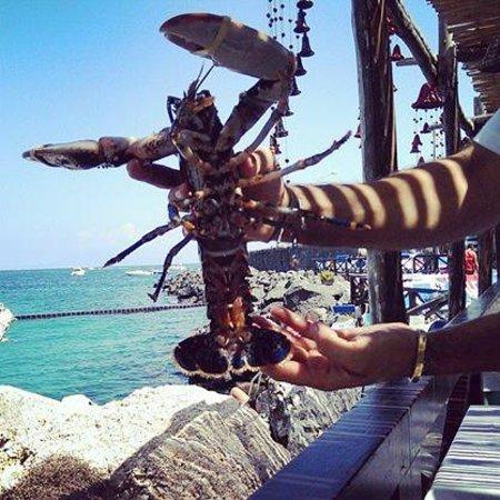 Lo Smeraldo: Lobster