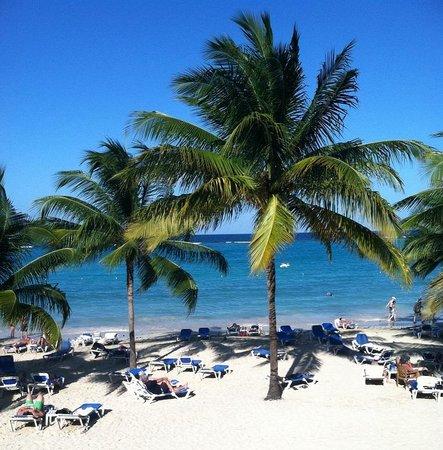 Grand Bahia Principe Jamaica: Beautiful Island