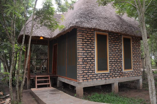 Irungu Forest Safari Lodge