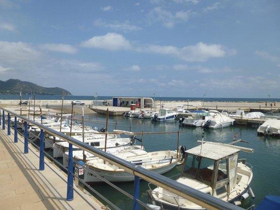 Hotel Cala Bona: part of the marina