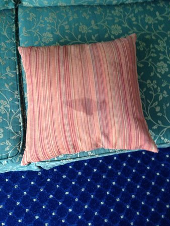 The Shores Resort & Spa : stained pillow on couch - facing out when we arrived