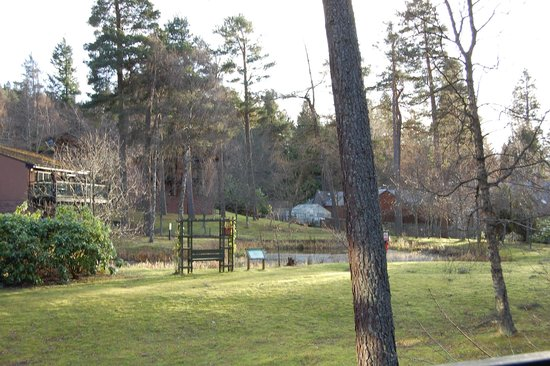 Hilton Grand Vacations Club at Craigendarroch Lodges: Hotel grounds