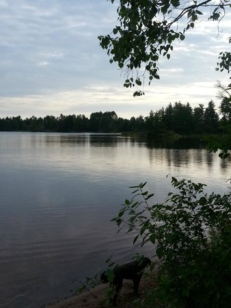 Turtle - Flambeau Flowage: View from our campsite