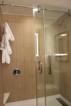 Hilton Garden Inn Washington DC / Georgetown Area: banheiro/box (quarto 333)