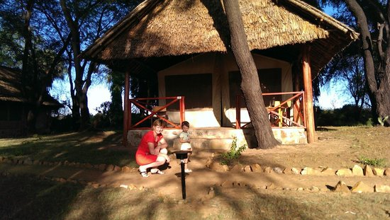 Loyk Tsavo Camp: рано утром много животных вокруг