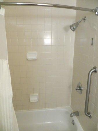 DoubleTree by Hilton Hotel Atlanta Airport: Shower