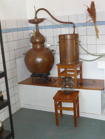 The Cadushy Distillery: De Distileerketel