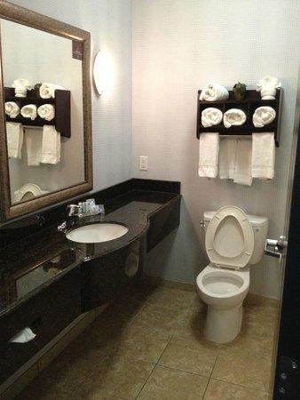 Sleep Inn & Suites West Medical Center: Vanity