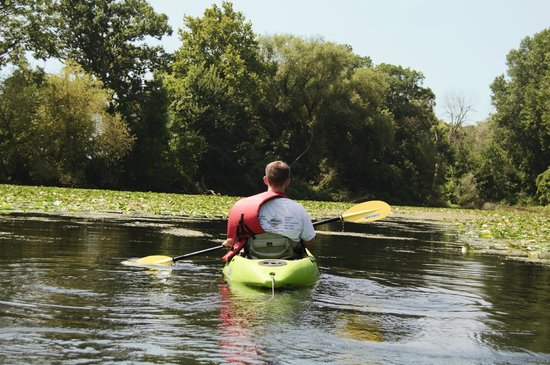 Kayak the Bay : In the Lagoon