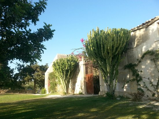 Azienda Agricola Busulmona: ingresso agriturismo