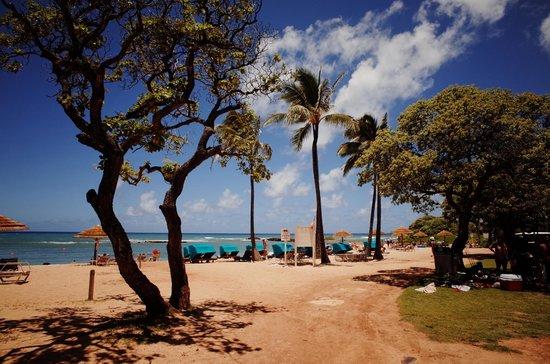 Turtle Bay Resort: プライベートビーチ