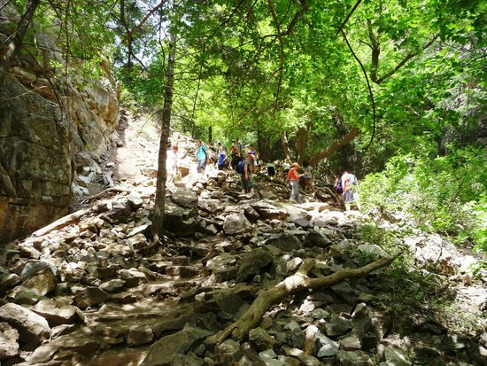 Hanging Lake Trail : The 3-hour out & back trail was steep and rough. You can see it in this image starting on the bo