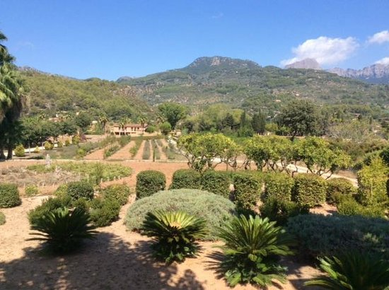 Finca Ca N'Ai: View from dining area
