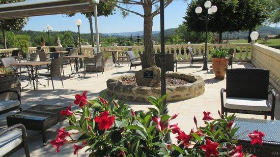 Le Mas de Guilles: Terrasse du restaurant