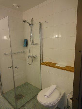 Break Sokos Hotel Flamingo: Shower and toilet.