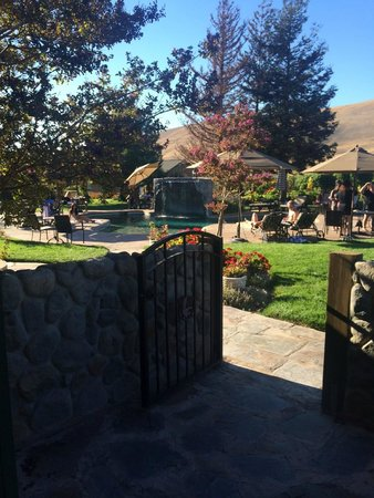 The Purple Orchid Wine Country & Spa : View from our private patio in the Double Eagle room of the pool area
