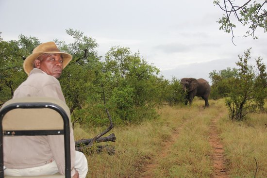 Pondoro Game Lodge: safari