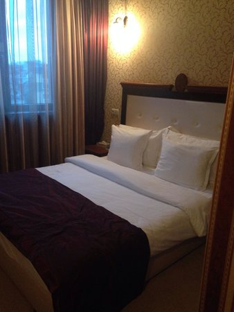 BEST WESTERN PLUS Bristol Hotel: Double bed room